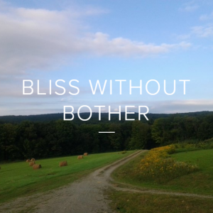 BlissWithoutBother